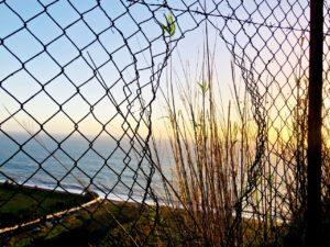 Jätän oravanpyörän – elämä ilman palkkatyötä Ostolakossa Virve Fredman