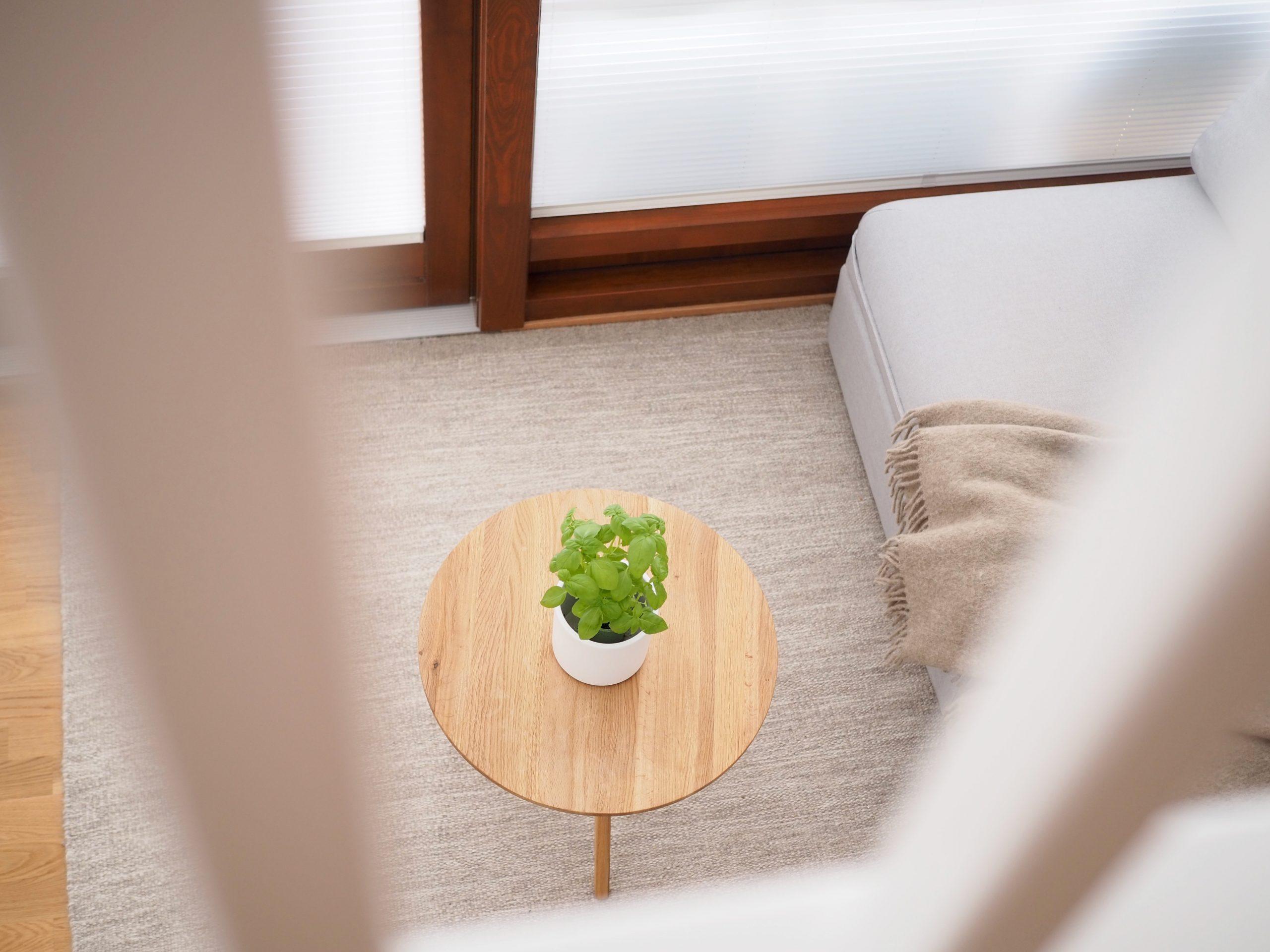 Millaista on asua pikkutalossa Virve Fredman minimalismi